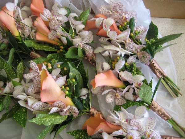 orchids-and-callas