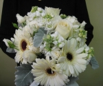 gerbera-daisies-roses-stock-dusty-miller