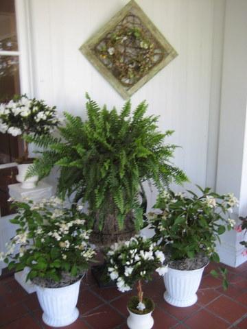 welcome-arrangement
