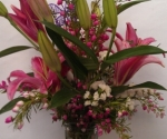 pink-lilies