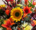 Sunflowers bring smiles!