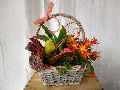 Warm tones basket $40.00
