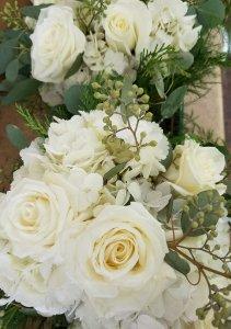 hydrangeas roses